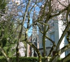 Schloss_frueh_magnolie_kl
